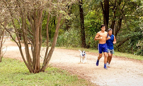 lifestyle image of people jogging near trees